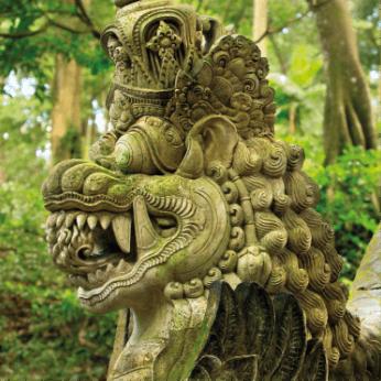 Naga - Guardian of Nature