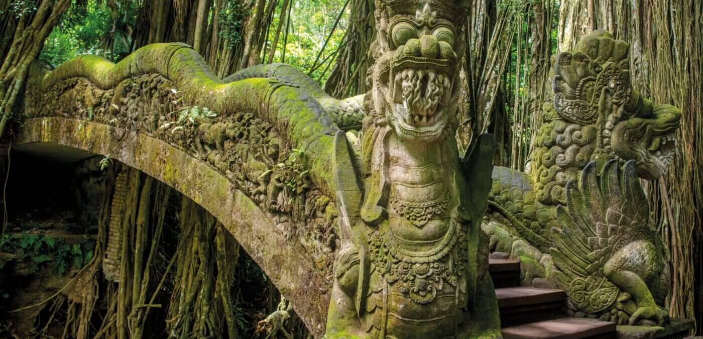 Pont antique dans la jungle indonésienne - Naga Rum